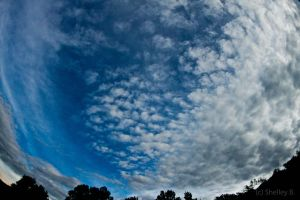 Fish-Eye Clouds by dragongoddess62