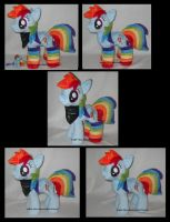 cute and awesome Dashie, more pics by MLPT-fan