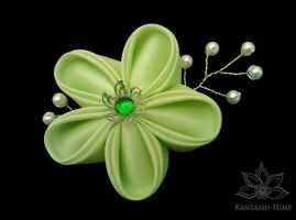 Going Crazy for Green by Kanzashi-Hime
