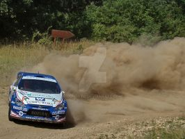 307 wrc dusty powerslide by donfoto
