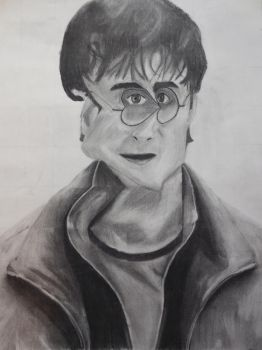 Distorted Harry Potter by GingerBeez