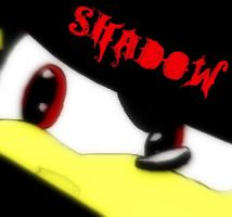 Shadow the Hedgehog by sonicandshadowfan