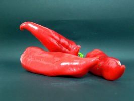 Red Peppers by RowanLewgalon