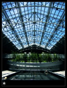 Greenhouse Effect by rotorblade