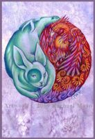 Compassion and Energy by rachaelm5