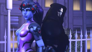 Reaper and Widowmaker by Theonidan