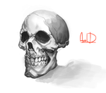 Another skull by McFjury