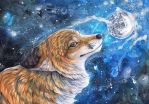 Foxes Moon by dawndelver