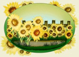 Background of sunflowers by Tumana-stock