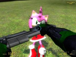 Master chief vs amy rose by Halberd200