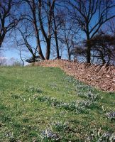 stone wall  greenfield village by peaceocake