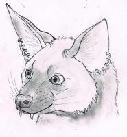 Aardwolf 'were' by modifiedMONSTER