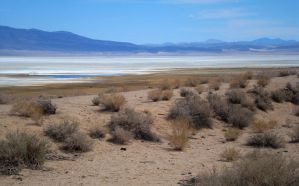 Owens Lake by dwarfeater
