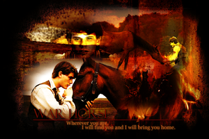 War Horse by TimmyFD13