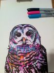 What's with the owl? by evanhawley