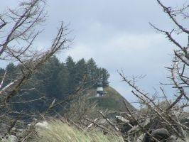 Lighthouse through the trees by PhatPhoenixPhatale