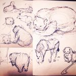 Zoo Sketches 001 by MemorySoul