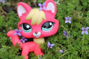 lps fox ouside in the flowers! by SophieaGTV