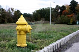 Little Yellow Hydrant by JessicaStarrPhoto