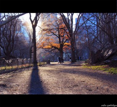 Central Park by ordre-symbolique