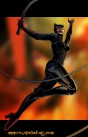 C - is for Catwoman by Ammotu