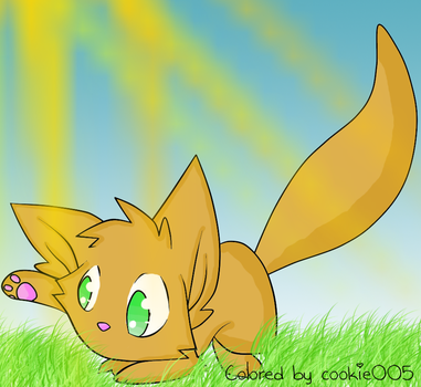Coloreado de un gato :3 by Cookie005