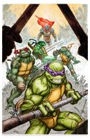 Teenage Mutant Ninja Turtles by FreddieEWilliamsii