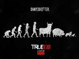 True Blood Season 4 Promo 1 by riogirl9909