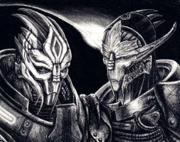 Nihlus and Saren - Echoes by efleck