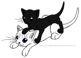 Icecloud and Blackpaw by lucymaggielover