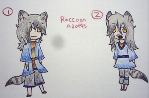 Twin Raccoon Adoptables :OPEN: by A-Small-Store