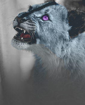 attempt to snarl by UnfurledBanners