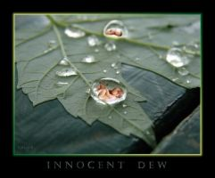 Innocent Dew by kalyre