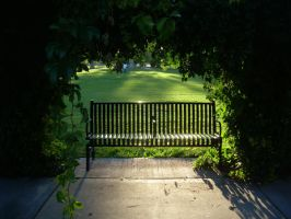 Park Bench 2 by abuseofstock