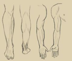 Legs and Arms - Daily Practice by Olooriel