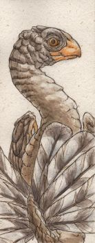 Caudipteryx bookmark by teriathanin