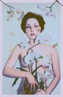 Orchid by Katie-Watersell