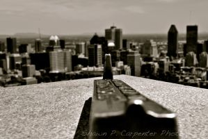 Surveying the City by spcbrass