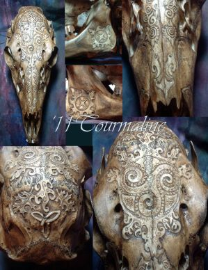Shaman Deer skull by tourmaline-83