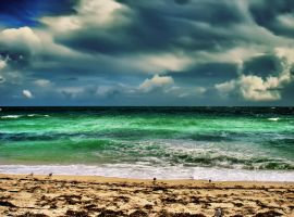 Miami Beach 2 by Crazito