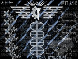 DNA Structure by LandRiders7th