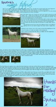horse manip tutorial by Sputnk
