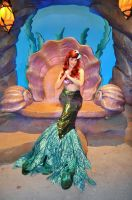 Ariel's Smile by BellesAngel