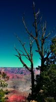 Grand Canyon 03 by gintautegitte69