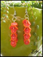 Grapefruit Earrings by Delinlea