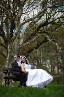 Bride and Groom Sitting on a Park Bench by Ondrejvasak
