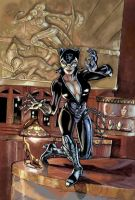 Catwoman by timothylaskey