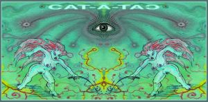 CAT A TAC by offermoord