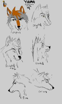 Yuuma expressions doodle by Starquilled