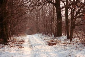 Winter 2012 - 2 by Eufrosis
